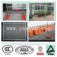 China high quality australian temporary fence ideas(china factory) on sale