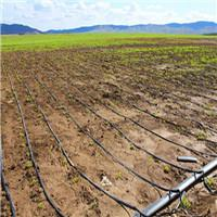 Buy cheap drip irrigation pipe from Wholesalers