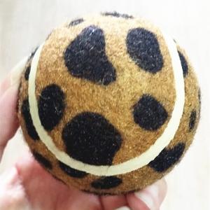 dog toy ball