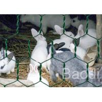 Quality Plastic Coated Chicken Wire Mesh Galvanized Iron Wire As Fencing Mesh for sale