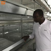 Quality Design H Type Good Quality Automatic Chicken Layer Cage System for sale