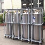 Quality 175L Cryogenic Liquid xygen/Nitrogen/Argon Cryogenic Cylinder Dewar Bottle TL175L for sale
