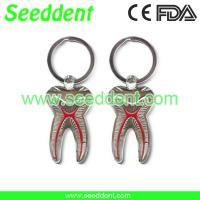 Quality Elegant tooth key chain for sale