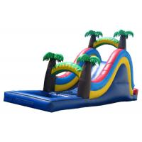 Quality Blue  Inflatable Large Water Slide For Kids Coconut Tree Type for sale