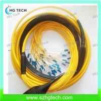 Quality 48Core LC/LC Fiber Optic Patch Cable for sale