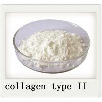 Buy cheap 9007 34 5 Joint Health Powder Chicken Sternum Cartilage Collagen Type II from wholesalers