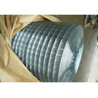 Quality Bright G.I. Welded Wire Mesh for sale