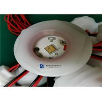 Quality DC24V Water Sterilizer UVC LED Lamp Module 2.0-3.0mW With Cable XH2.54 2P Terminal for sale