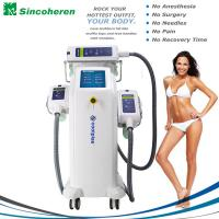 Quality 3 Treatment Handles Fat Freeze Cryolipolysis Treatment / Cryolipolysis Slimming Machine for sale
