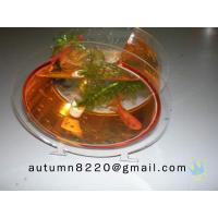 Quality plastic fish tank for sale