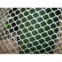 China Plastic Flat netting,plastic diamond mesh/netting plastic poultry mesh for chickens ducks on sale