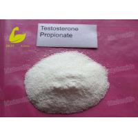 Quality CAS 57-85-2 Muscle Building Anabolic Steroid Hormone Powder Testosterone Propionate for sale