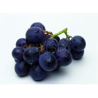 Quality Grape seed extract capsule natural nourishment product for sale