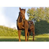 Quality Life Size Metal Horse Sculpture / Metal Horse Garden Sculpture Rusty Finishing for sale