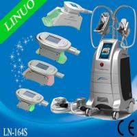 Quality ETG50-4S 4 cryo handles Fat Freeze Cryolipolysis Machine for sale