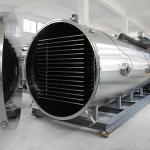 Quality Low Energy Consumption Fruit Lyophilizer Commercial Vacuum Freeze Drying Machine for sale