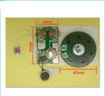China Sound Chip / Voice Module on sale
