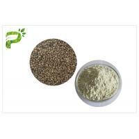 Quality Plant Source Natural Dietary Supplements Protein Organic Hemp Seed Kernel Protein Powder 50% 60% for sale