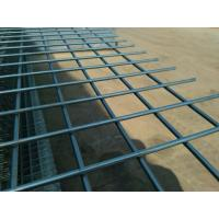 Quality Electro Galvanized Welded Mesh Panel for sale