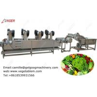 Quality Vegetable Washing and Drying Machine Price Industrial Fruit Dryer Machine for sale