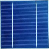 China Polycrystalline Solar Cell 156M-2BB on sale
