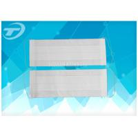 Quality Medical Disposable 2 Ply Face Mask With Earloop / Filter Paper for sale