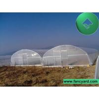 China Greenhouse,Green House,House Green,Agricultural Greenhouse on sale