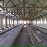 Roof Trusses Light Steel Frame Prefab Chicken Poultry