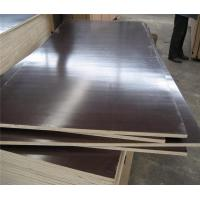 China BROWN MR film faced plywood wbp glue on sale