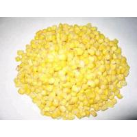 Frozen Sweet Corn,Frozen Vegetables