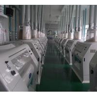 China Large Scale Wheat Milling Project Design and Manufacture on sale