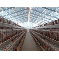 Quality PVC Down Pipe Poultry Farm Structure Chicken Shed With Grey paint Surface for sale