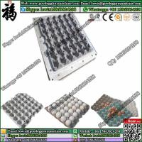 China Factory price plastic fuit tray fruit tray and egg tray machine mould on sale