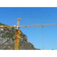 China Tower Crane QTZ63 Construction Mobile Tower Crane5610 on sale