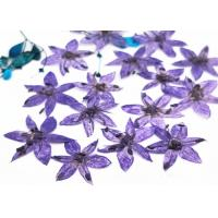Quality Time Gems Decorations DIY Pressed Flowers / Hand Pressed Flowers Multicolor for sale