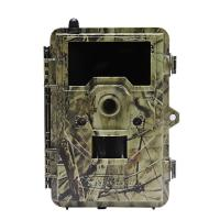 Quality 2.4 inch color display Outside Wild Game Infrared Trail Hunting Camera , CE / ROHS / FCC Approvals for sale