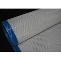 Quality Medium Loop Polyester Mesh Fabric For Paper Making Machine 3868 for sale