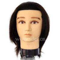 China Male Mannequin Head (EF-T014) on sale