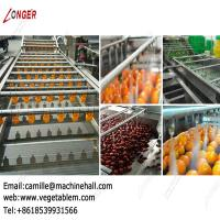 Quality Automatic Fruit and Vegetable Washing Equipment Dates Processing Plant for sale
