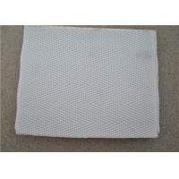 Quality High Temperature Resistant Polyester Mesh Belt With White Used For Sewage for sale