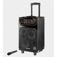 Portable Microphone Rechargeable Trolley Speaker For Outdoor Party And Dancing