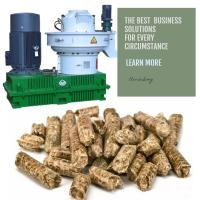 China Hot Selling In Vietnam Rotex Master A1 Level Wood Pellets Granulator Machine Wood Pellet Mill on sale