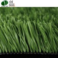 China Synthetic Artificial Grass For Football Ground Garden PE Monofilament Material on sale