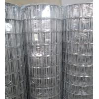 """Quality Hot-dipped Galvanized Welded Wire Mesh   3""""X2"""",2.7mm,1.2-1.8m for sale"""