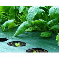 Weed Control Fabric Vegetable Garden Landscaping Weed Control Fabric Weed Suppressing Of Ec91084903