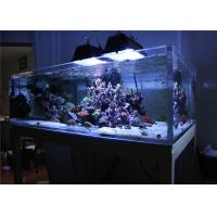 Quality Lightweight Plexiglass Acrylic Aquarium Fish Tanks / Marine Aquarium Tanks for sale