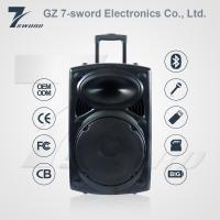 OEM 2017 Hottest Sales 12V 7A Rechargeable DJ Trolley Speaker with bluetooth