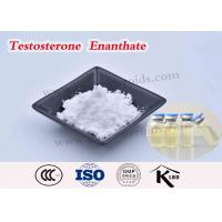 China Test Enanthate 250 Testosterone Enanthate Injectable Steroids USP Grape Seed Oil on sale
