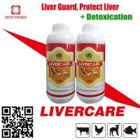 China Poultry Feed Supplement Broiler Growth Promoter Liver Care Tonic Solution on sale