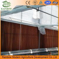 Quality 7090 model poultry farm greenhouse evaporative cooling pad for sale